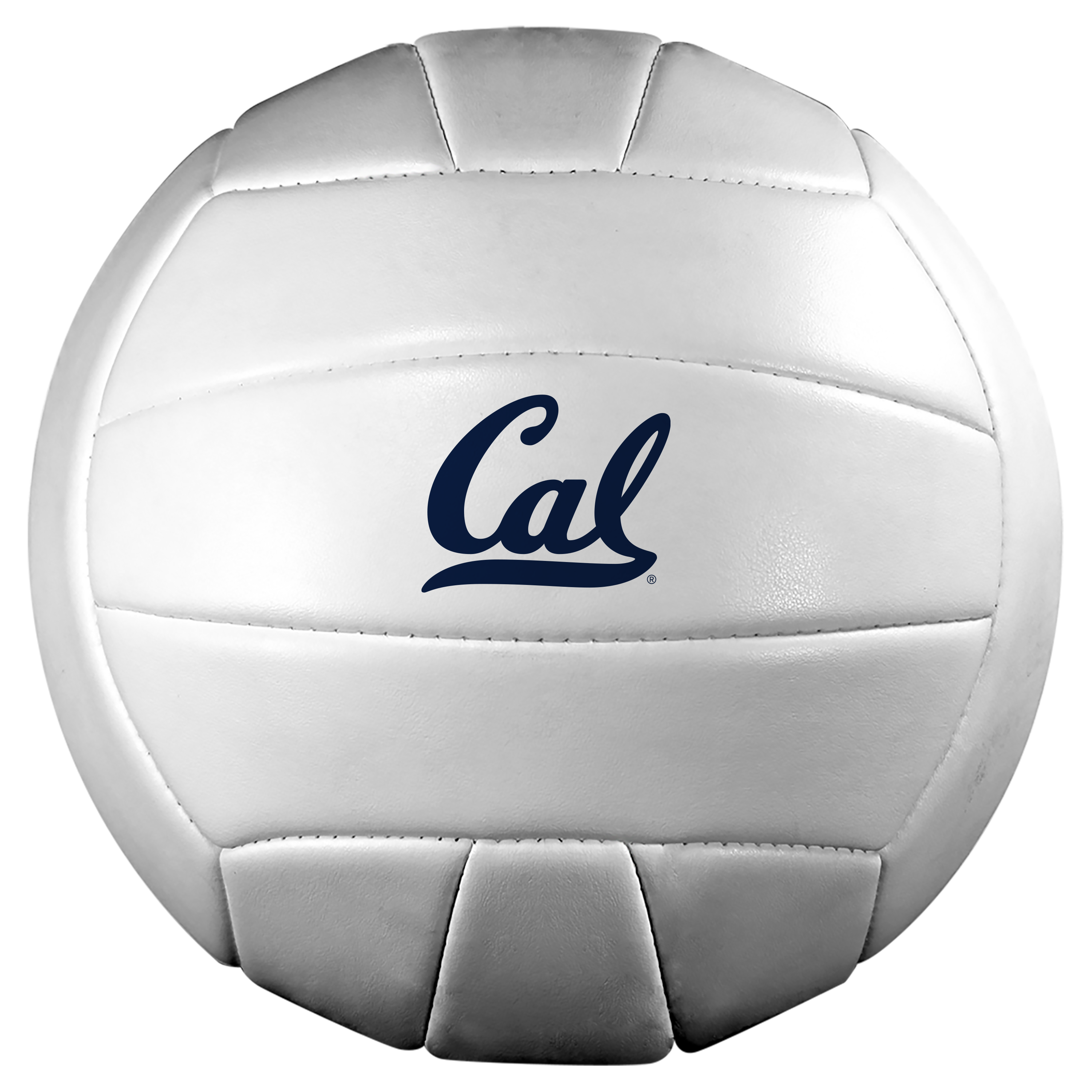 Detailed image of Baden Volleyball