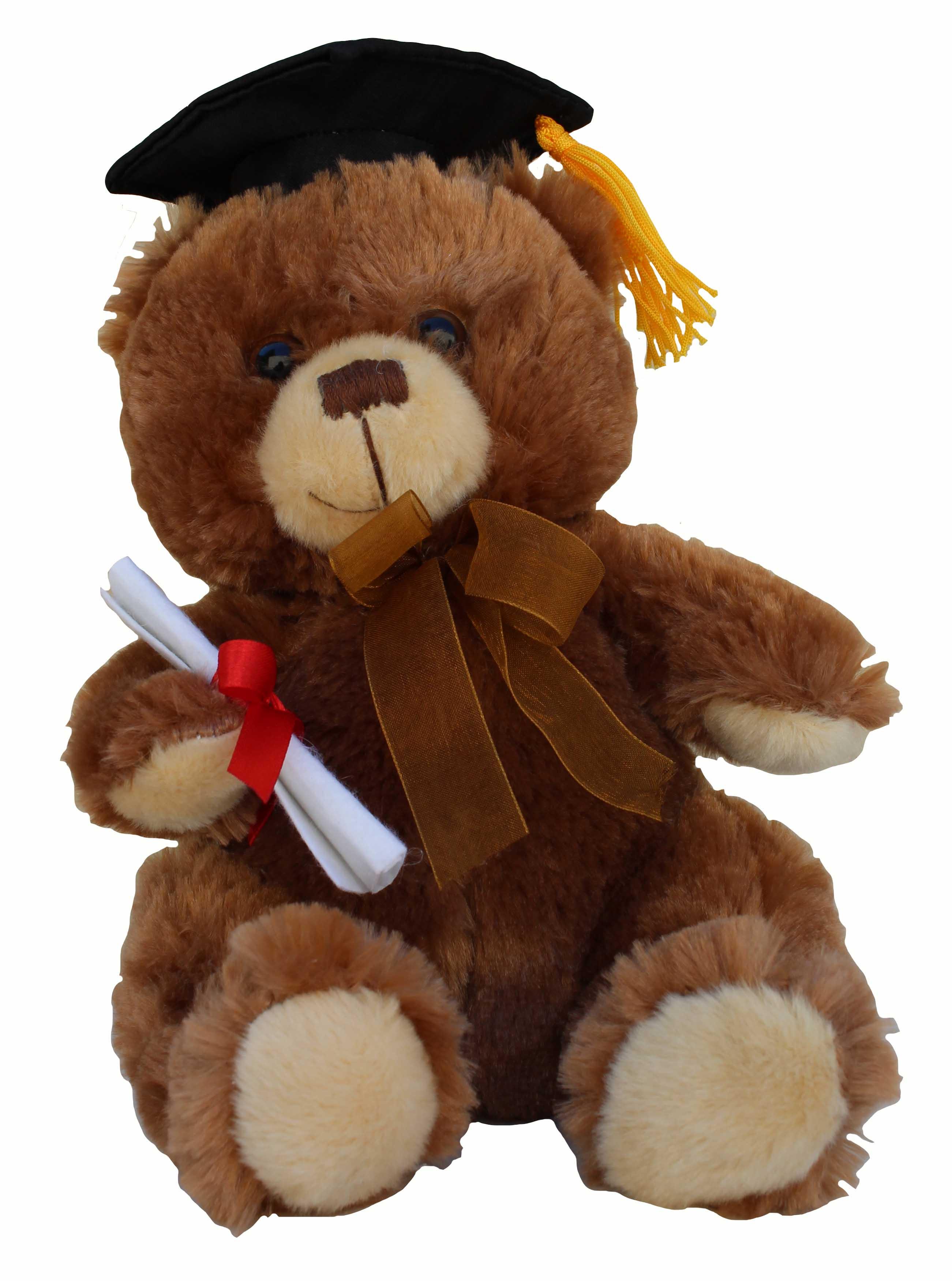 image of: Grad Bear