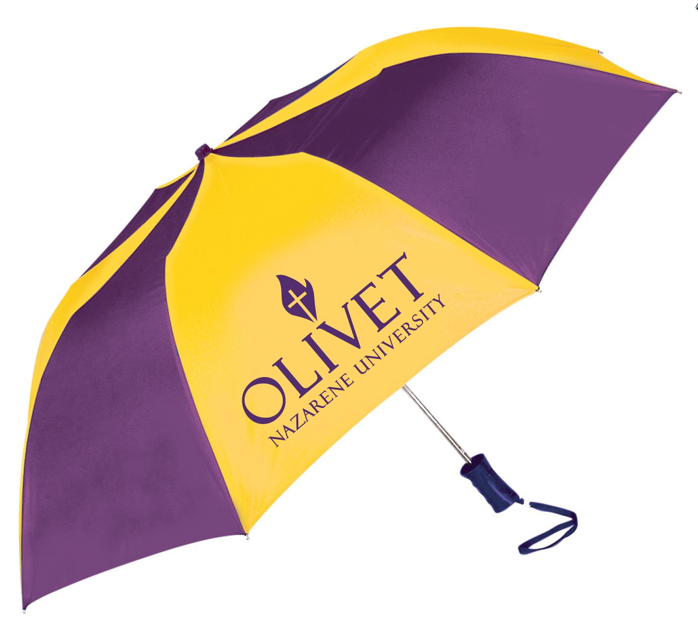 image of: Auto Fold Umbrella
