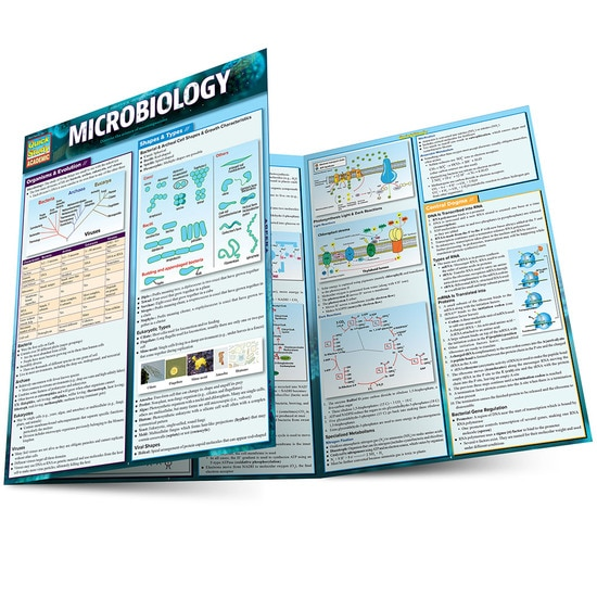 MICROBIOLOGY LAMINATED STUDY GUIDE