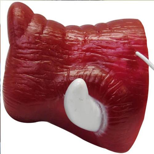 Arkansas Razorbacks Hog Nose Tusk