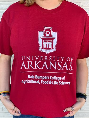 University of Arkansas Bumpers College Tower Tee - Crimson