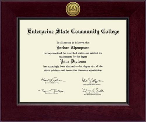 Century Gold Engraved ESCC Diploma Frame