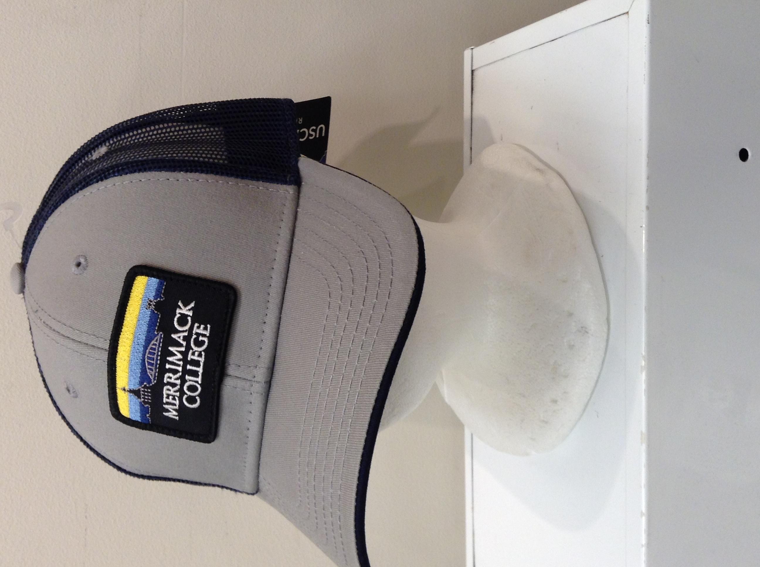 image of: Skyline Mesh Back Hat