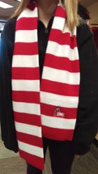Image for the Red & White Striped Knit Scarf product