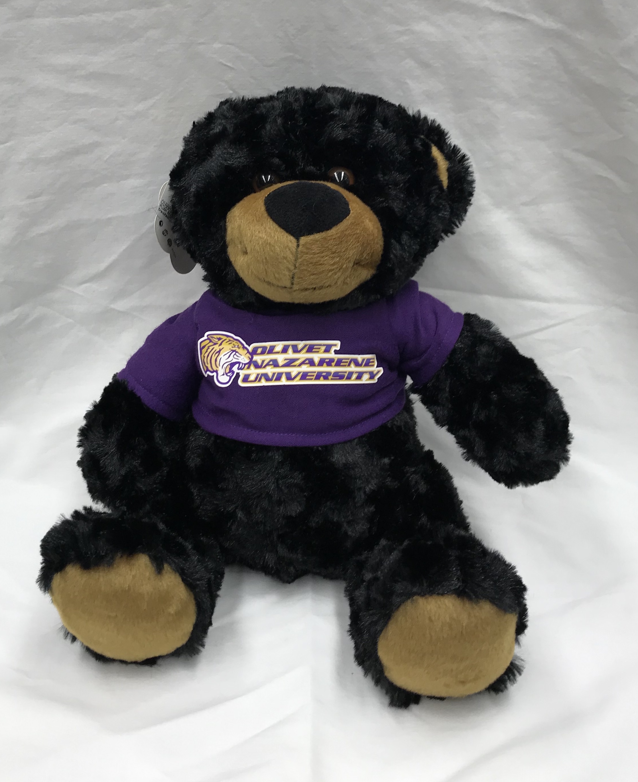 image of: Mascot Factory Black Bear