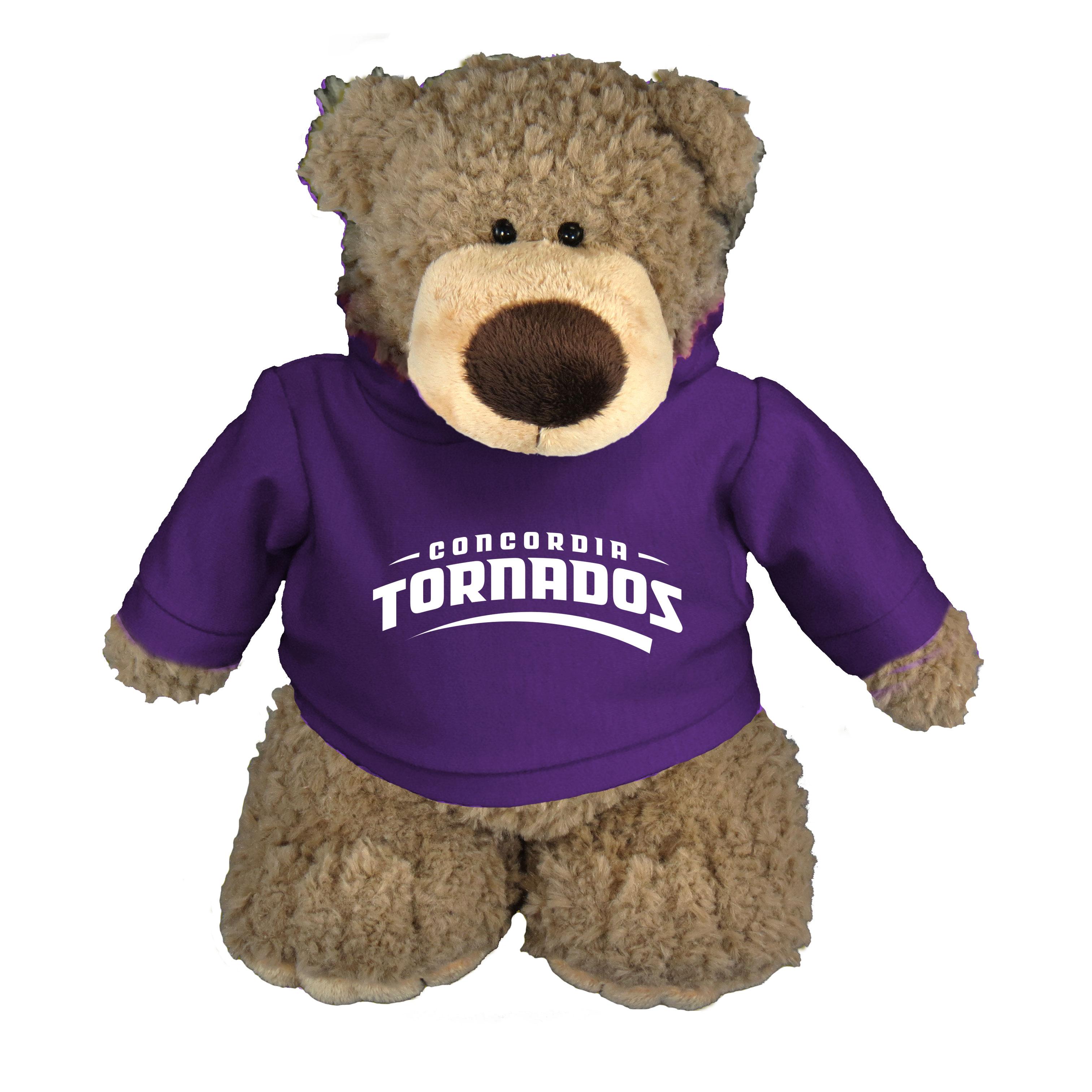 Archie Teddy Bear with Purple Hoodie