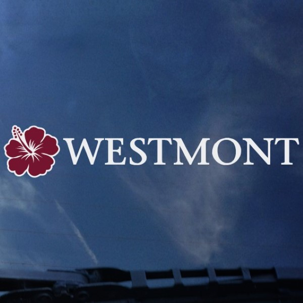 image of: Color Shock Westmont Hibiscus Decal
