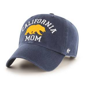 Detailed image of Archway Cleanup Mom Hat